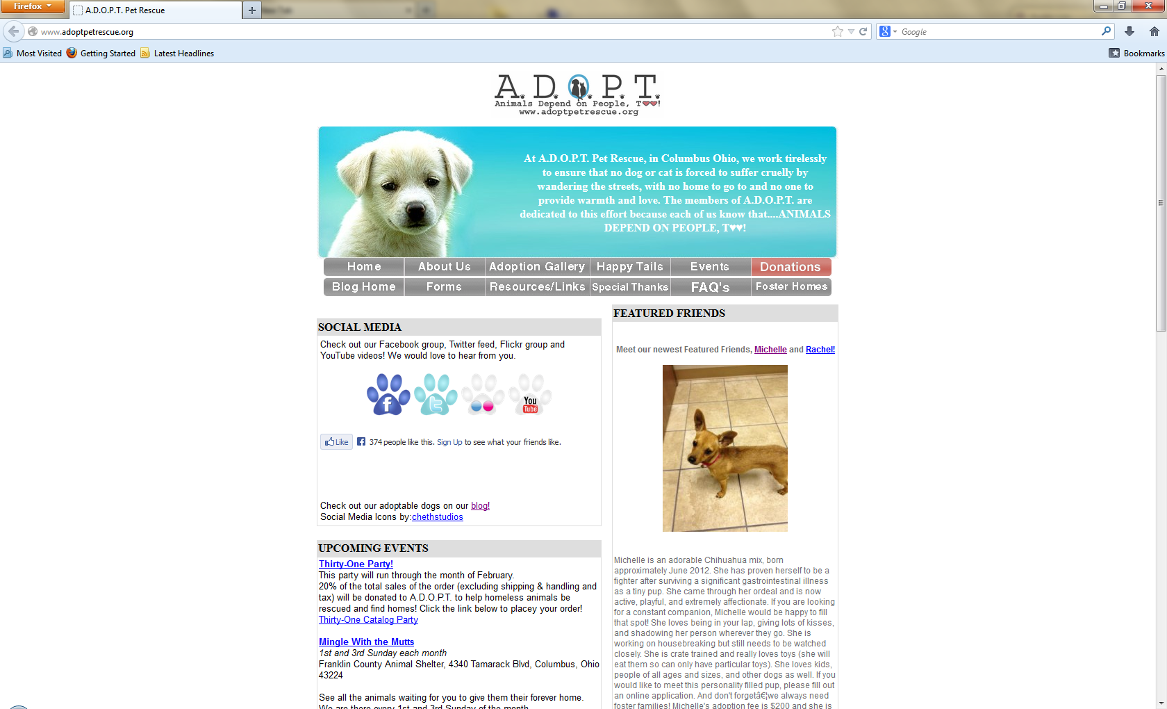 screenshot of the old site design layout